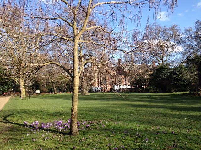London_Lincoln' Inn Fields